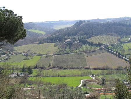 Una vallata di Orvieto